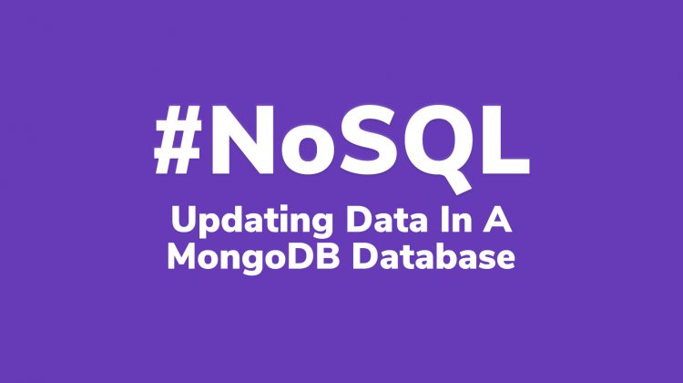 updating data in mongo db database
